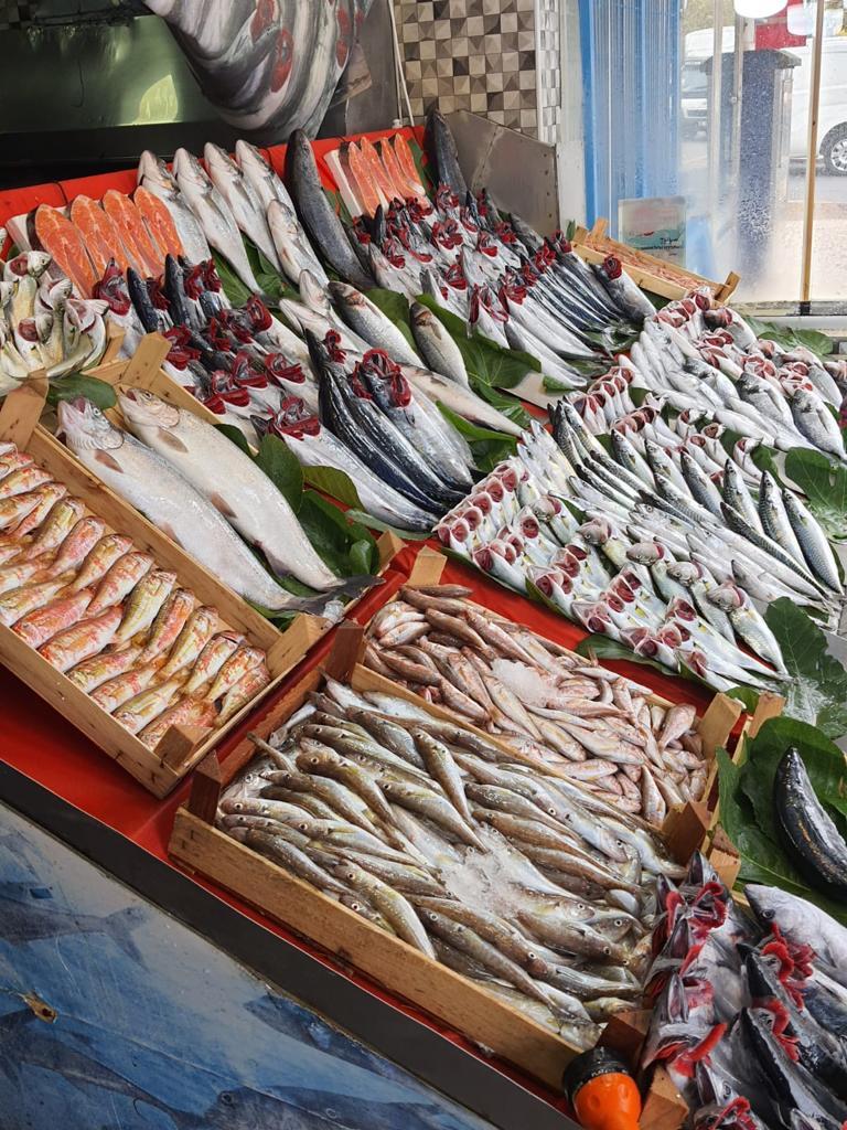 Mis Balık   Çiğ Balıklar